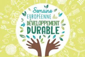 Read more about the article SEDD 2020 au Collège