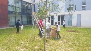 Read more about the article Reprise de l'atelier Vigie Nature: préparatifs pour l'été